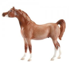 Cheval Arabe Rouge Roan